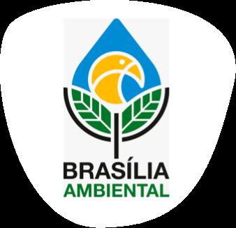 Logotipo/Símbolo IBRAM