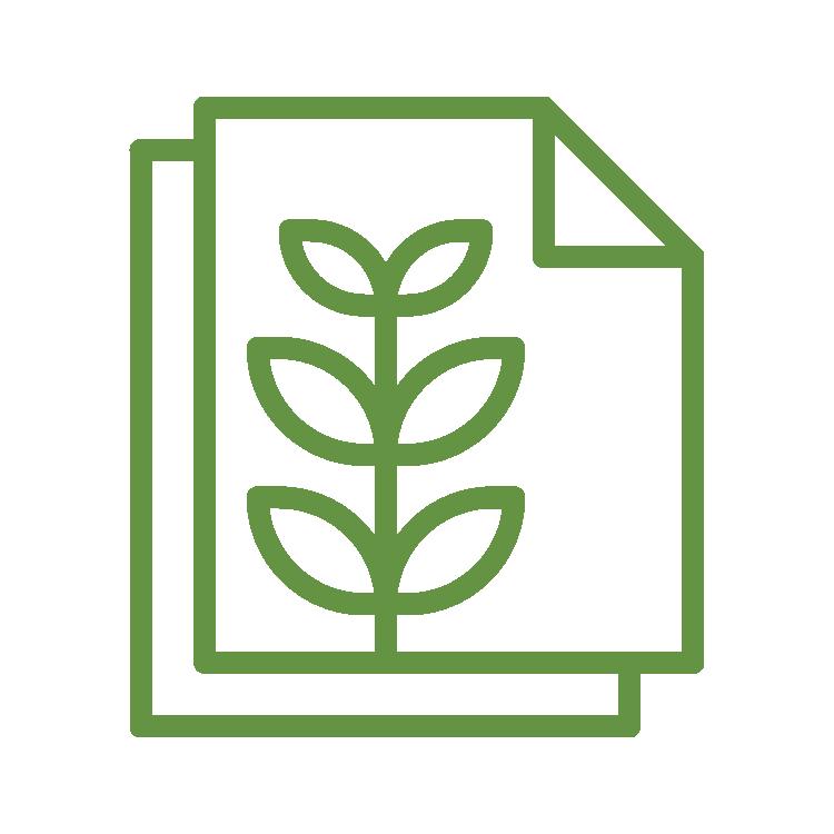 Objetivo 4 do SISDIA - contorno verde folha com 2 ícones de folha de ofício e um ramo de folha dentro